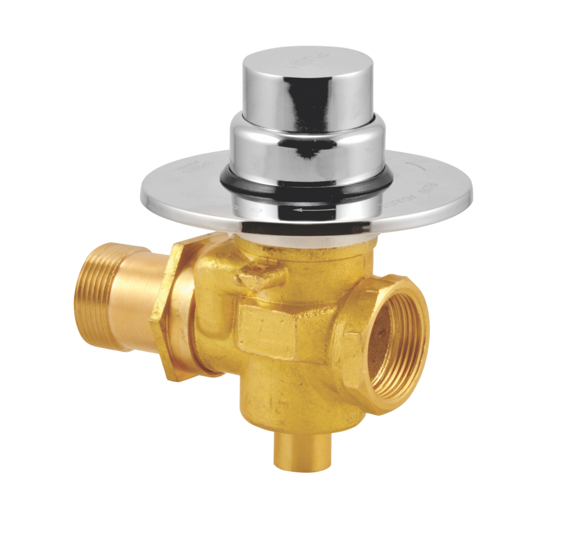 Flush Valve Concealed Button